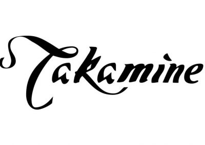 TAKAMINE bei MUSIK MEYER
